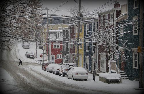 Wintertime white coats on Jellybean Houses, St. John's, Newfoundland, Photo:Flickr
