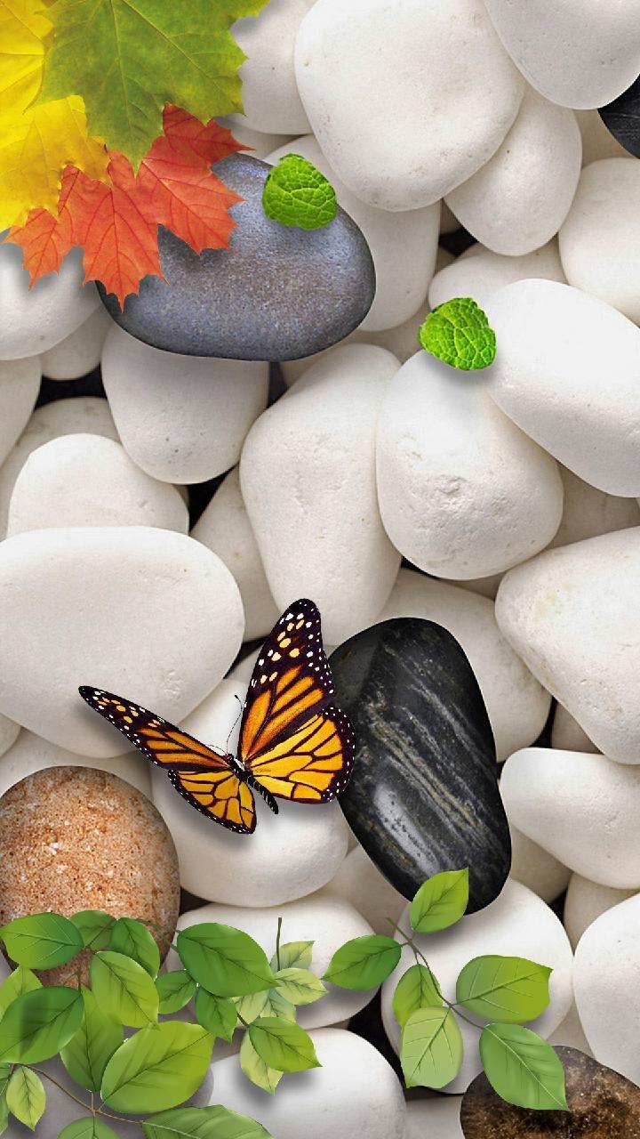 Download Hd Pebbles Wallpaper By Rjsunsetsingh Ea Free On Zedge Now Browse Millions Of Popular 4k W Stone Wallpaper Pretty Wallpaper Iphone Zen Wallpaper