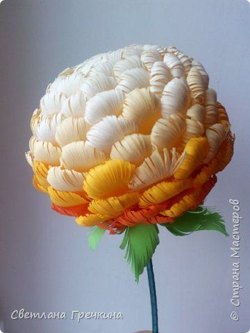 Paper chrysanthemum