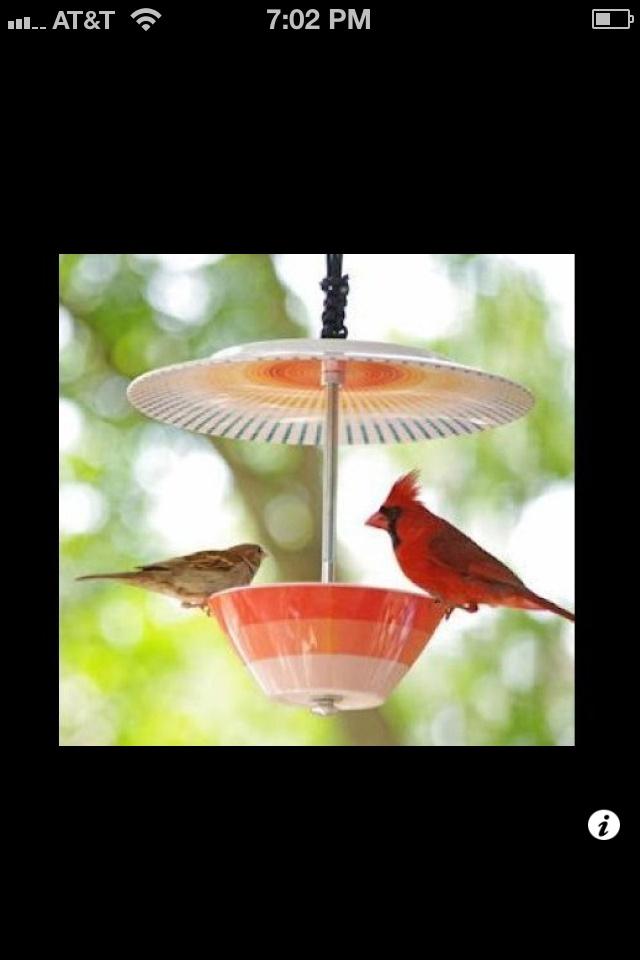 reused plate bird feeder