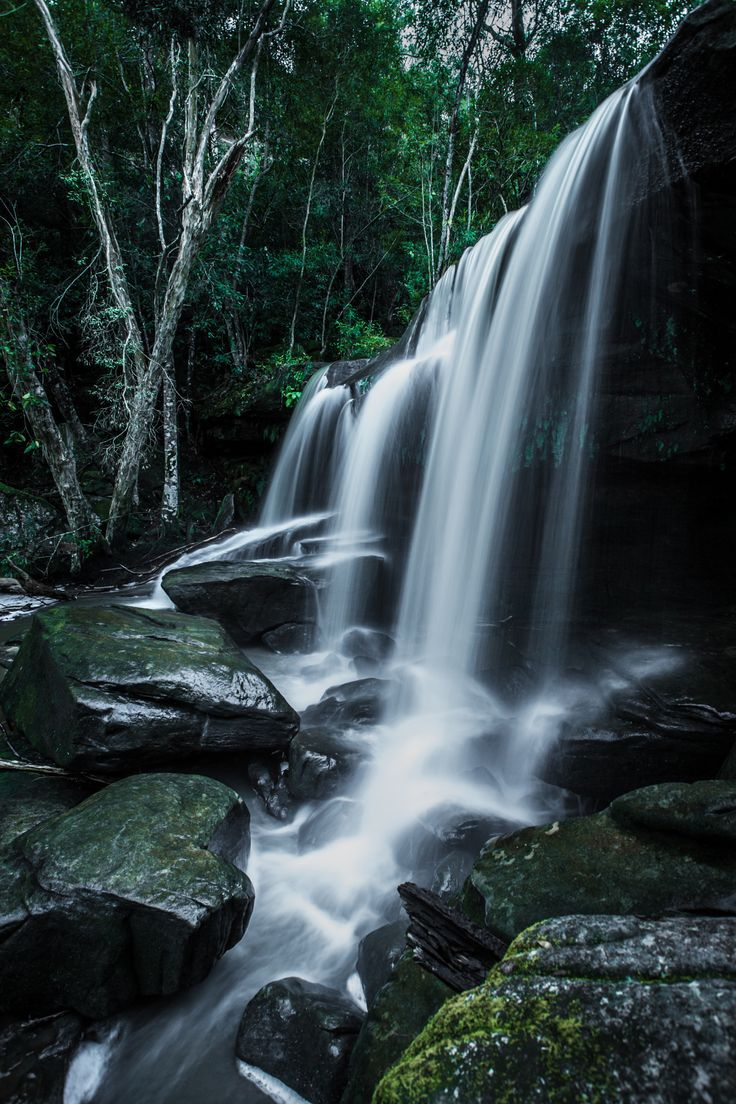 Middle Somersby Falls, by Robert Downie... #light #rocks #long #waterfall #falls #cascade #exposure #australia #flow #moss #rainforest #sandstone #tranquil #curtain #creek #newsouthwales #centralcoast #gosford #trickle #Trees #Water #BrisbaneWaterNationalPark
