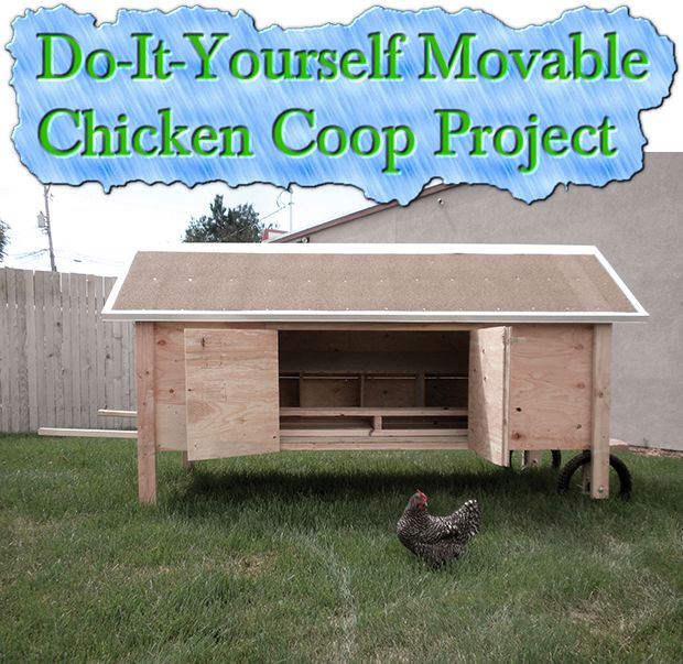 Do It Yourself Building Plans: Do-It-Yourself Movable Chicken Coop Project