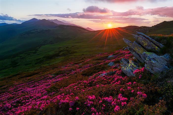 Magical Sunrise Over The Rodna Mountains