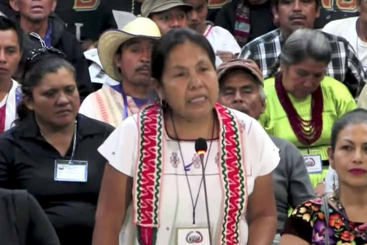 Maria de Jesus Patricio Martinez will be Mexico's first ever indigenous candidate to run for president of Mexico. https://twitter.com/ExpansionMx/status/870061108459180032  [br]  The recently-formed National Indigenous Congress (CNI), which is supported by the Ejército Zapatista de Liberación N