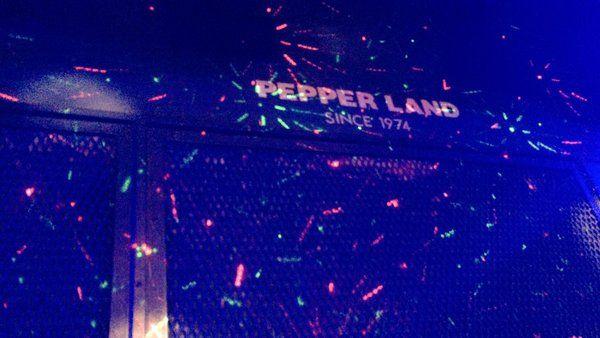 【Schroeder-Headz】  特異点 リリースツアー 8場所目は岡山PEPPERLAND ワンマン  終了しました。 ありがとうございました! 明後日は名古屋!