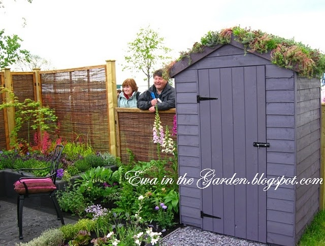 Garden Sheds With Patio 71 best garden sheds images on pinterest | gardening, greenhouse