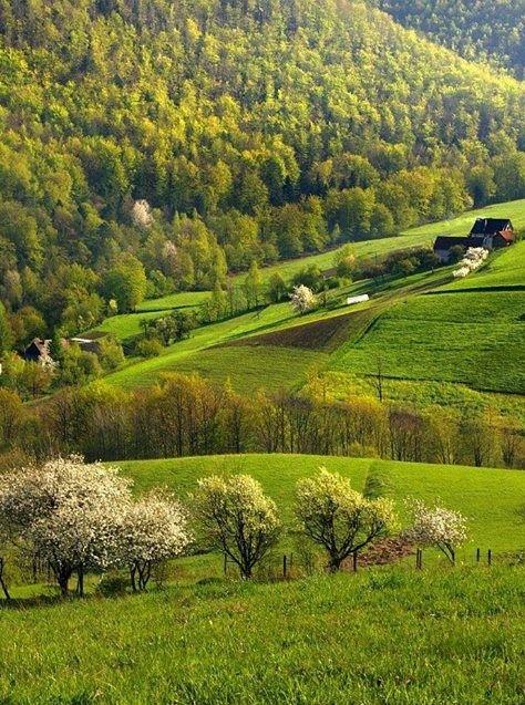 Spring time in Beskid Sadecki, S.Poland