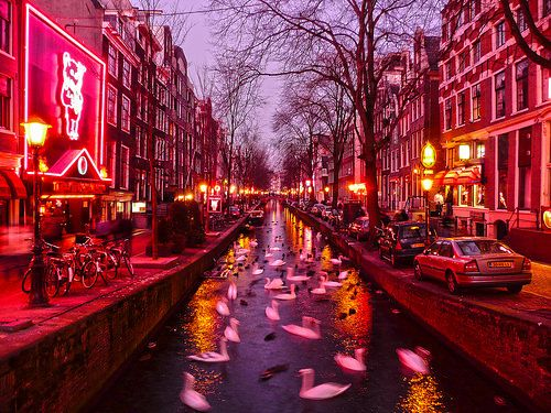 Red Light District, Amsterdam. Can't go to Amsterdam without seeing the red light district. Ha ha!
