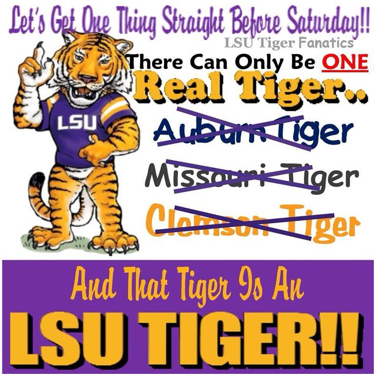 lsu more pic of Mike the tiger - WOW.com - Image Results