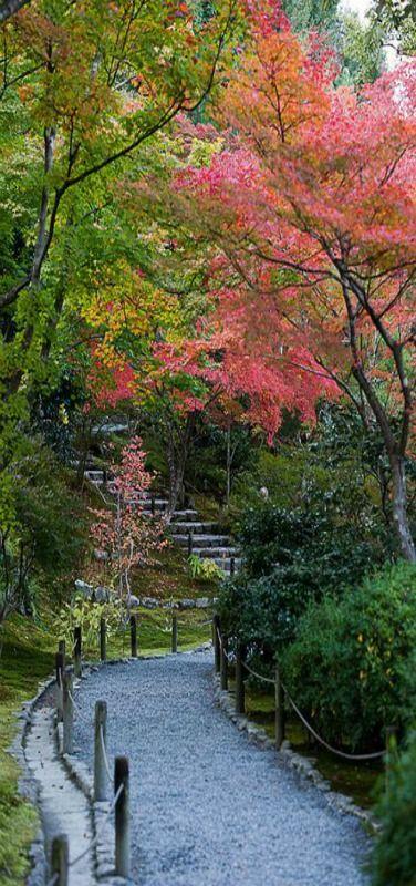 Tenryu-ji Temple, Arashiyama, Japan