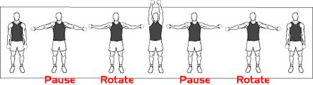 Standing Lateral Dumbbell Raises