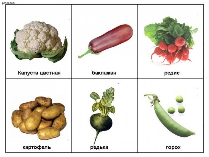 Картинки овощи лото