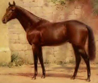 ARTILLERYMAN (Aus) Br c 1916, Comedy King (GB) - Cross Battery (NZ). 26 starts, 11 wins, 7 placings. Winner 1919 Melbourne Cup as a 3yo. Also winner 1919 AJC and VRC Derbies. In 1920, it was discovered he had rapidly-spreading cancer, his last win was March of that year. At about midday on 29 January 1921, the champion colt died.