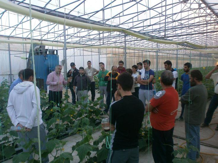 IRTC : Επίσκεψη Νέων Αγροτών στα Υδροπονικά Θερμοκήπια των κκ. Μιλτιάδη & Δημήτρη Πάλλα - 05/11/2012