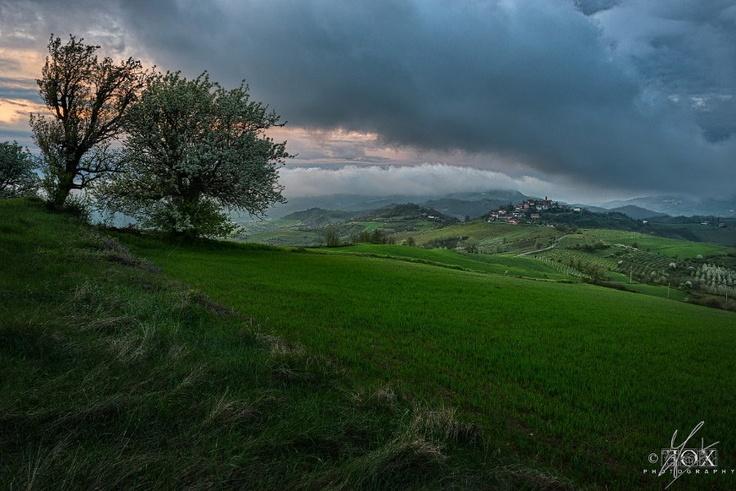 A view of the Tortona Hills
