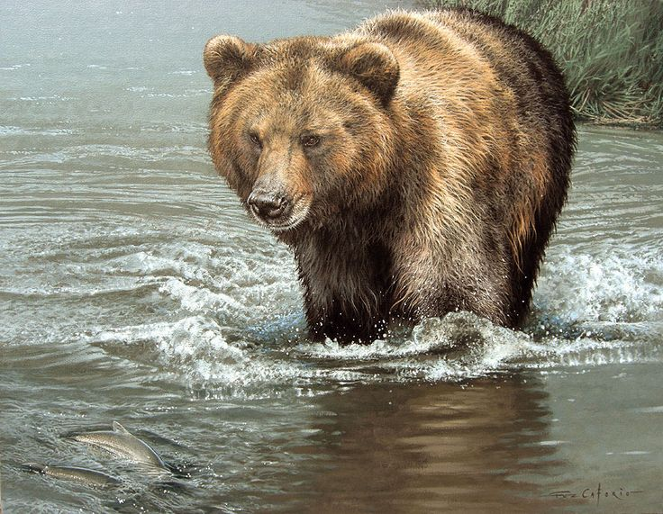 Kamchatka Sushi by Fuz-Caforio-Art on deviantART - this is an acrylic painting, NOT a photograph #AnimalArt #Bear #Art