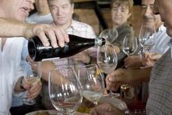 Wine Tasting (Cata de Vino)