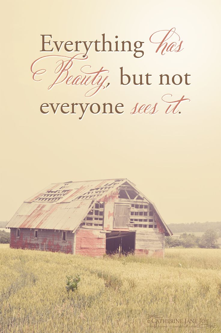 """""""Everything does have beauty...Sometimes we do not stop to see the beauty because we are busy with life...this barn is beautiful...perfect for photography. We spent some time admiring the beautiful rustic charm of it & imagined the beautiful things that happened there...The thing about finding beauty in everything. You almost need to look at life with newborn babe eyes. Eyes that know no judgement or labels. If you can see that way...you will find beauty in everything around you."""" ♥"""