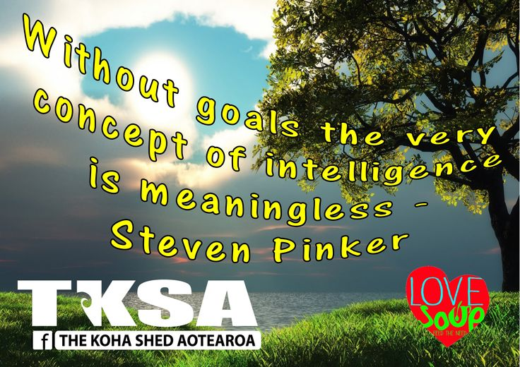 Without goals the very concept of intelligence is meaningless - Steven Pinker