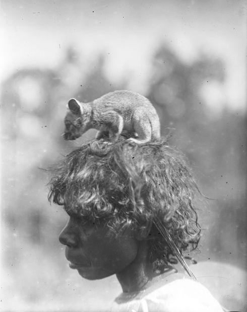 Previous 1 of 16 images Next Aboriginal Australia A Ponga Ponga woman carries a pet possum, Northern Territory, 1922.