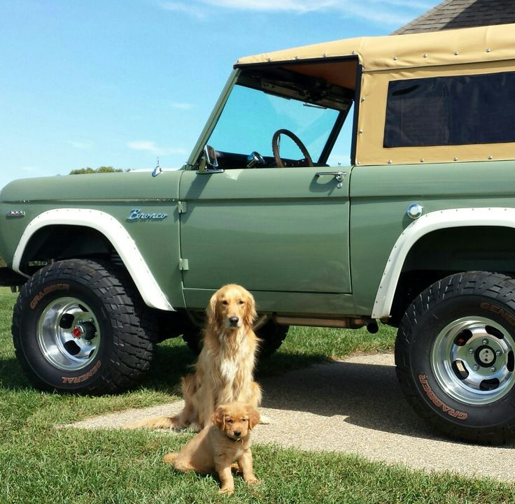 17 Best Images About Sweet Bronco On Pinterest