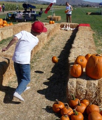What a fun idea for the kids at the wedding! Since pumpkins won't be in season yet, we could use a regular ball