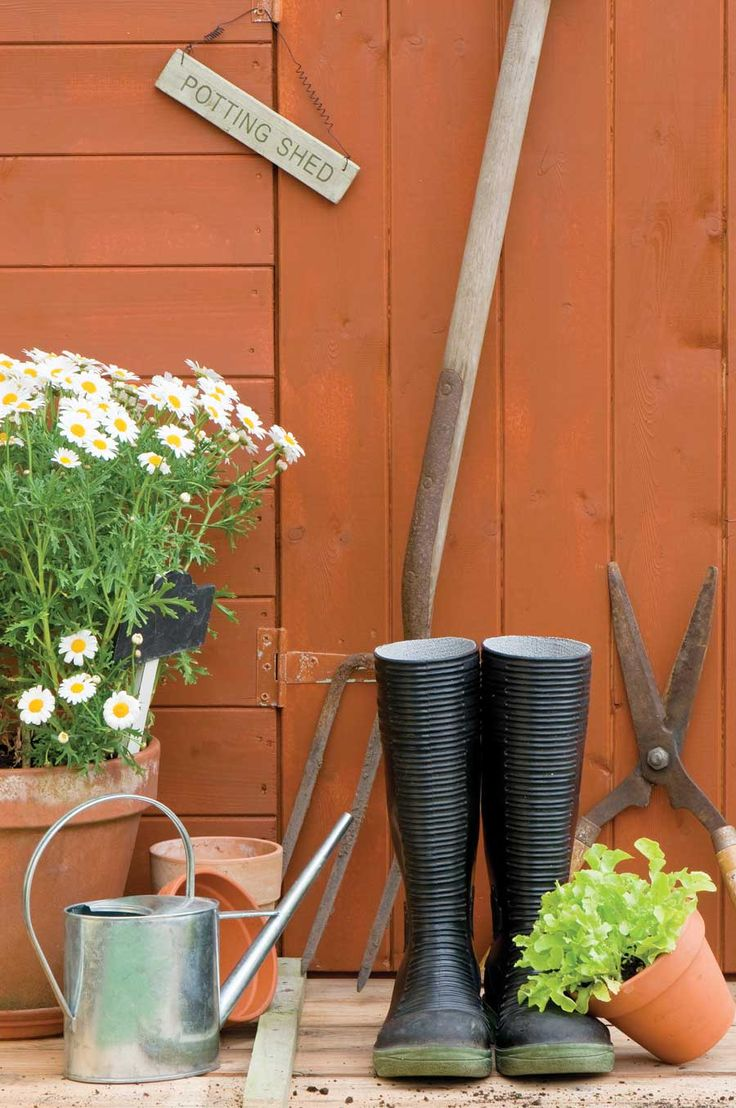 299 best garden care and necessities images on pinterest