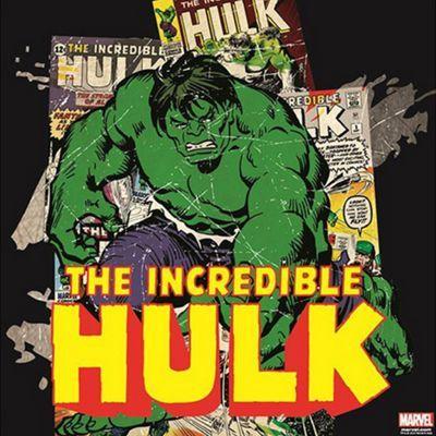 Marvel The Incredible Hulk Canvas | Debenhams