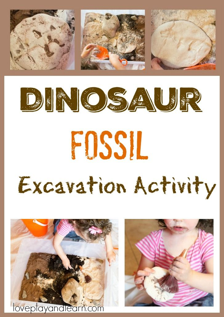 Dinosaur fossil Excavation Activity for Kids. Dinosaur sensory activity for toddlers and preschoolers. Learn the science of fossils which having fun.