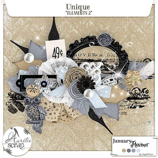 """Elements 2 """"Unique"""" digital scrapbooking kit by Aurelie Scrap. A winter touch in this very shiny elements pack. I propose you this pack of elements which can only embellish your most beautiful photos. Here is my January Flavour 2016."""