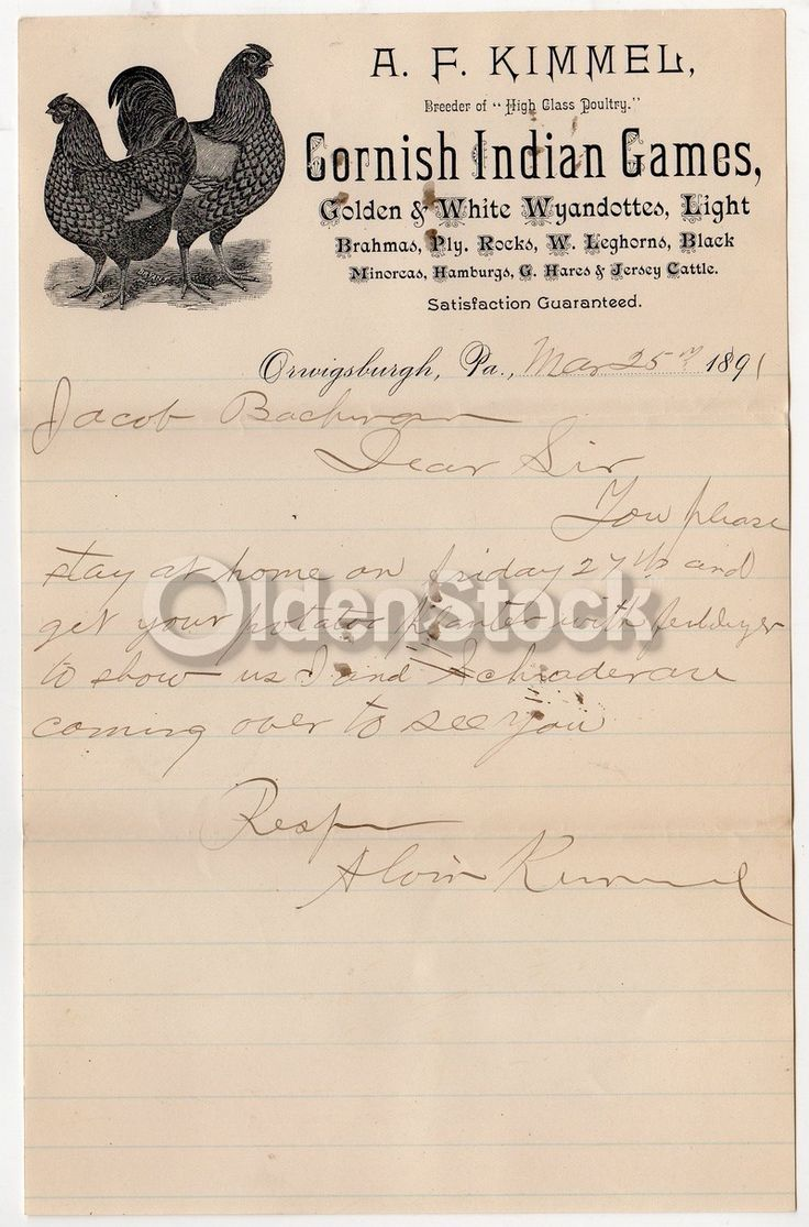 A. F. Kimmel Cornish Indian Game Hens Orwigsburgh PA Antique Autograph Signed Letterhead 1891