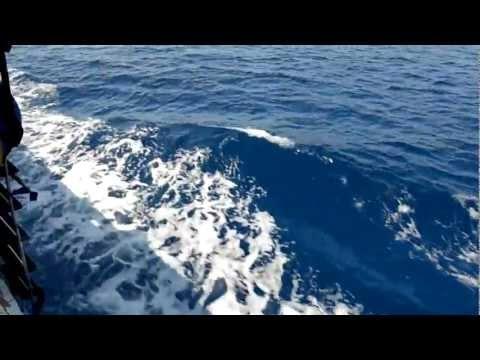 Краткая видеозарисовка, из шести серий, о поездке на остров Крит. В 5-й серии вы увидите поездку на остров Грамвуса и бухту Балос, это одни из самых красивых мест острова Крит.