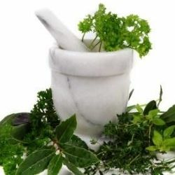 Top 6 Herbs To Lower Cholesterol