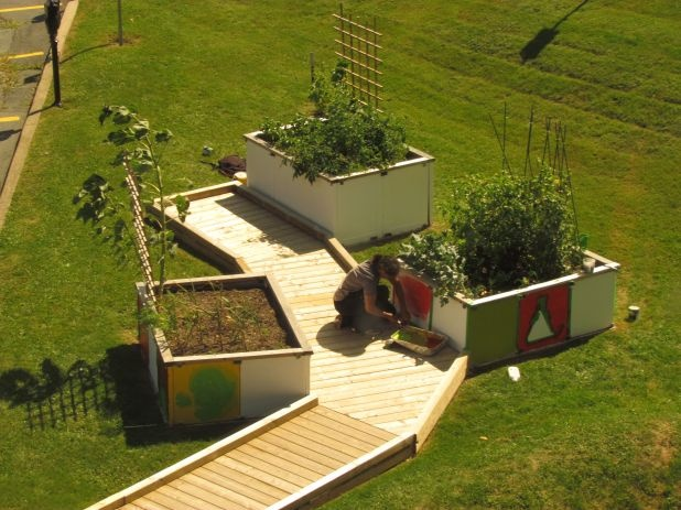 Accessible raised gardens... this has to happen.