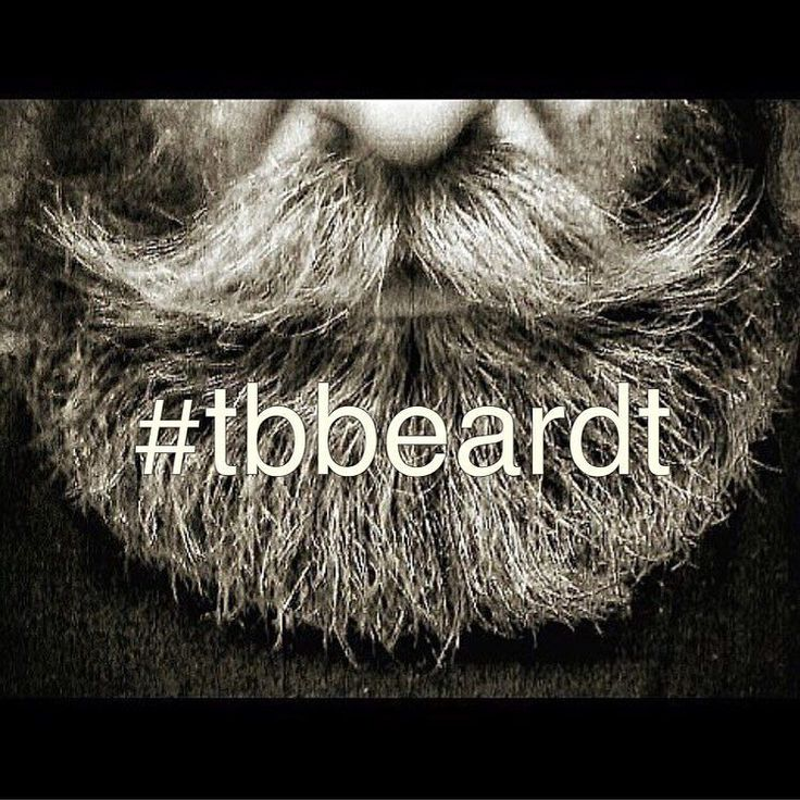 #tbbeardt is a fresh tag for that beard pic you put in the archives. Dust it of and tag it you can go ahead and use #tbbeardt every Thursday and maybe you'll get featured here. Tag share and post  . #Theswedishbeardcommunity#beard#bearded#beardlife#beardlove#beardoil#moustache#beardman#mustache#mustachewax#skägg#skäggvård#beardstyle#barber#barberlife#beardedlifestyle#eatclean#beardgrooming#beards by theswedishbeardcommunity