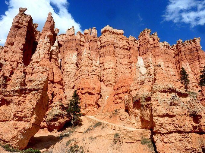 米国ユタ州ブライスキャニオン国立公園にて。Bryce Canyon National Park in Utah, USA.