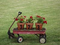 House Number on Flower Pots in a Wagon.