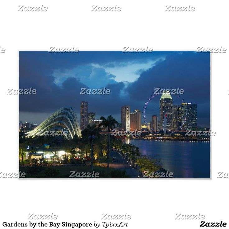 Gardens by the Bay Singapore Photo Print