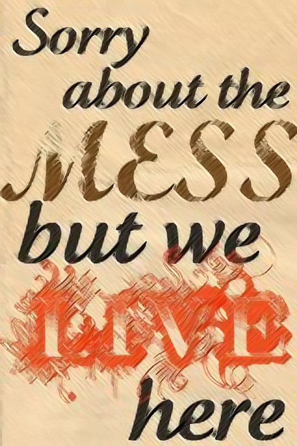 Sorry about the mess: Truth, Quote, My Life, Living Room, Front Doors, So True, Messy House
