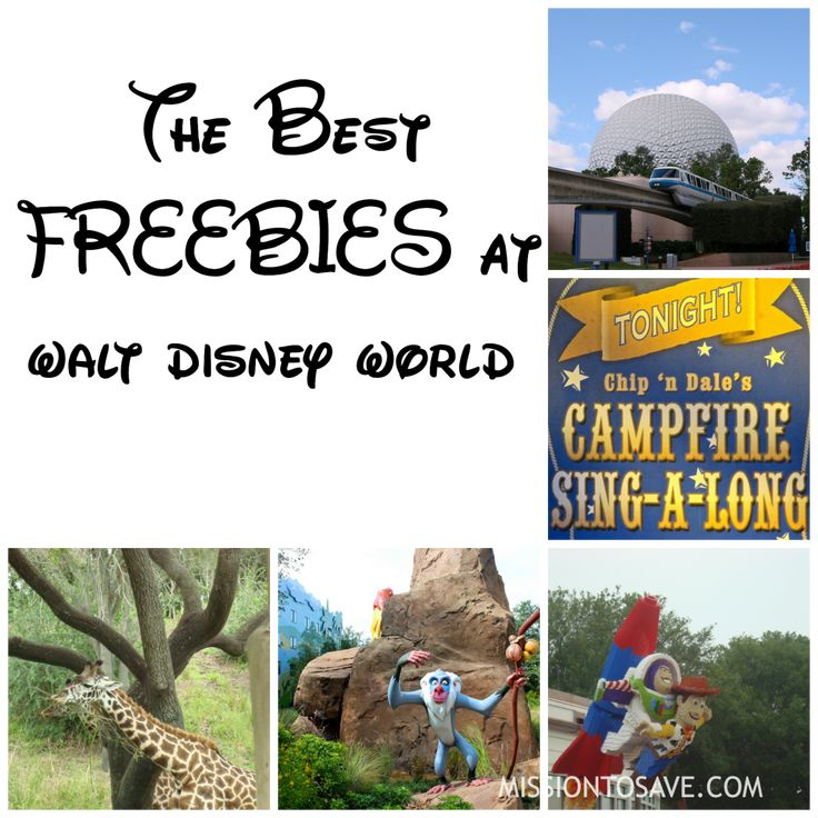 """Check out this list of the Best Freebies at Walt Disney World.  Especially if you are not staying """"on property"""". Great tips for some free Disney fun."""