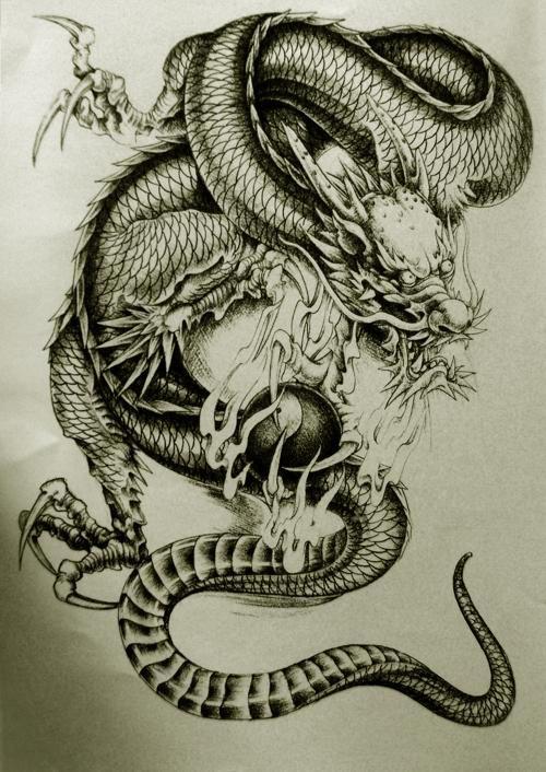 Dragon Tattoo Gallery | Oriental Dragon Tattoo Designs Style 28 - Free Download Tattoo #38231 ...