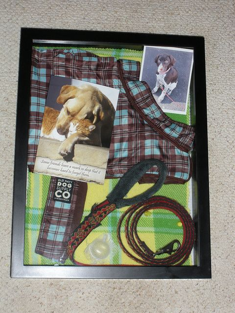 On Pinterest I saw this idea to use items from your dog for a shadow box frame. This is my own version of tha tidea. The background is part of the blanket he was given when we got him as a puppy.
