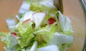 リンゴと白菜のマリネサラダ
