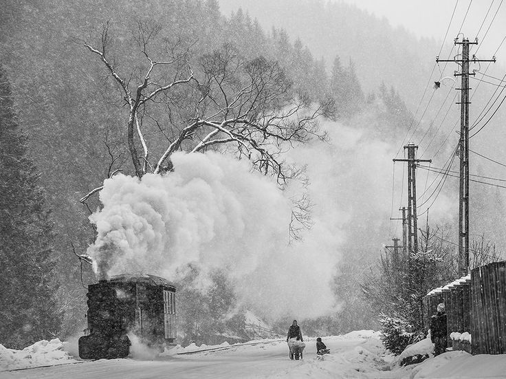 Snowy Day in Bucovina - Photo by Bogdan Comanescu http://buff.ly/10F6sRT #NationalGeographic #photography #travel #amazing #photo #winter #snowy #day