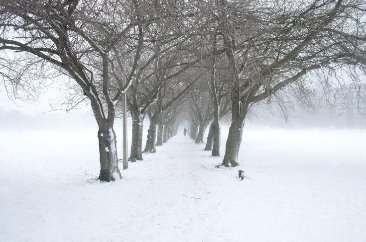 ITAP of Edinburgh in the snow