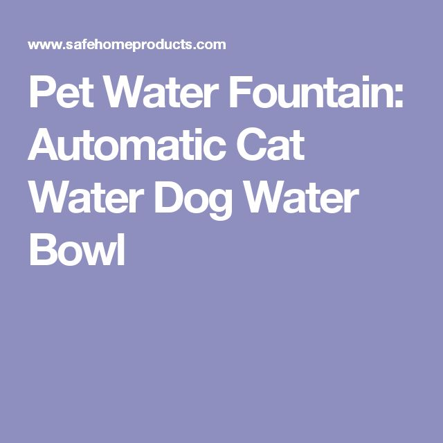 25 Best Ideas About Dog Water Bowls On Pinterest Dog