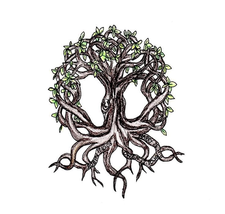 Celtic Tree Of Life Shoulder Tattoo Tattoo for between my shoulder