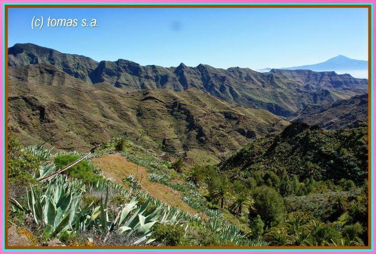 Tenerife senderos......: TENERIFE SENDEROS -- LA GOMERA --- DEGOLLADA DE PE...