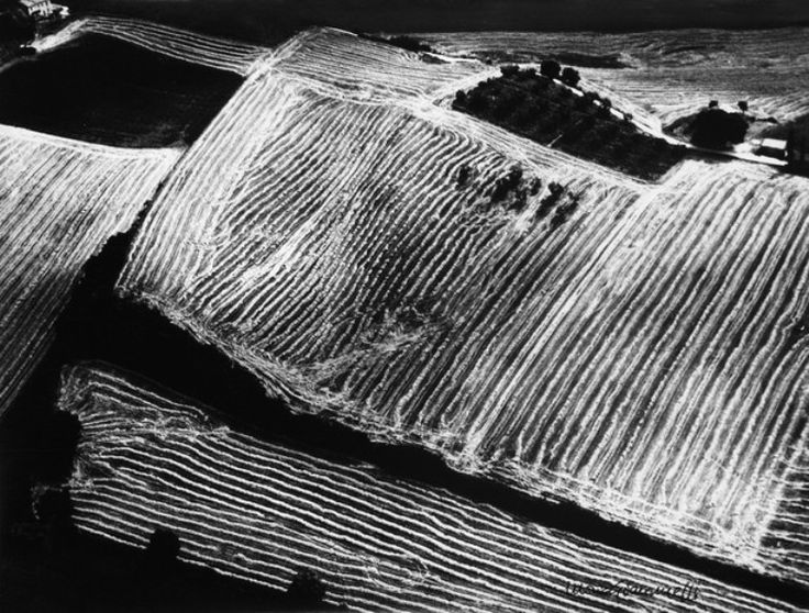 Mario Giacomelli (1925 - 2000) - Metamorfosi della Terra, 1980