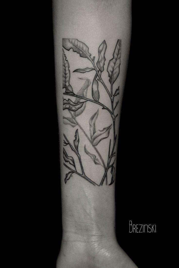 Best Apple Me Images On Pinterest Apples Apple And Beautiful - Surreal black ink tattoos by ilya brezinski